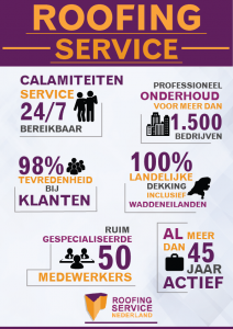 Roofing-service-infographic