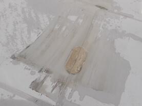 daken bleken